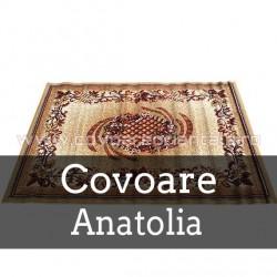 Covoare Anatolia