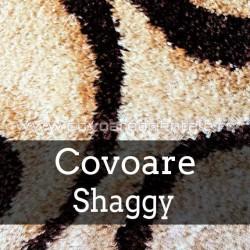 Covoare Shaggy